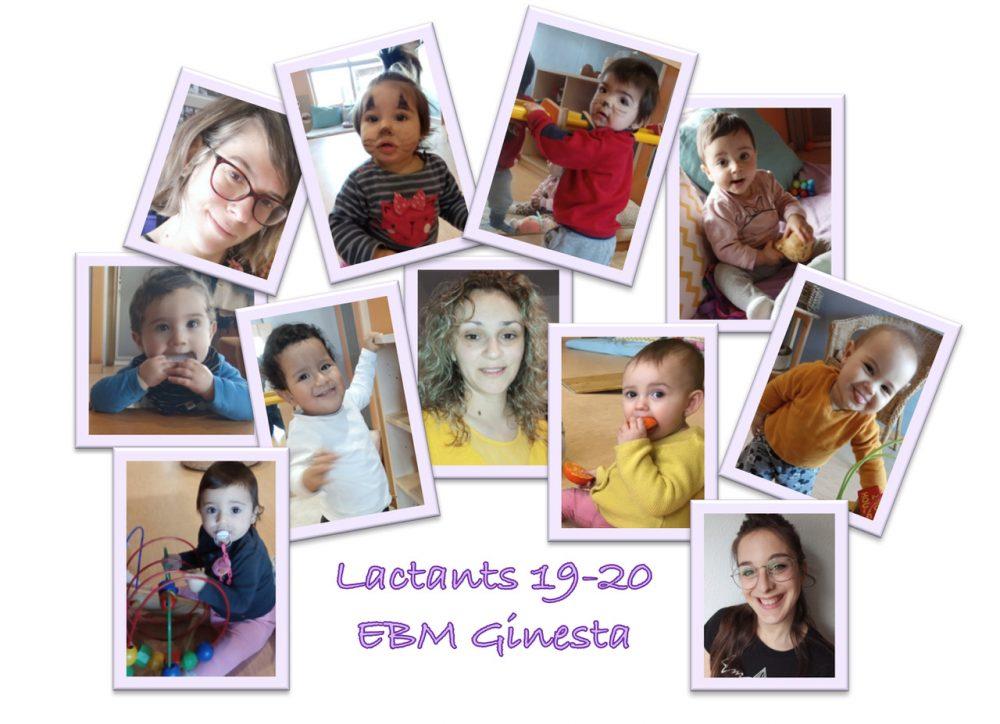 Lactants[12324]